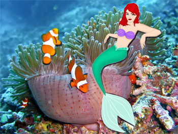 Jo in a Reef