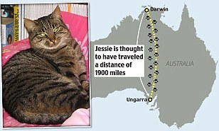 Jessie s Journey
