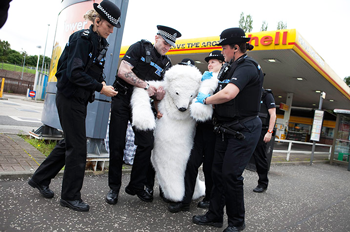 Polar Bear Arrest