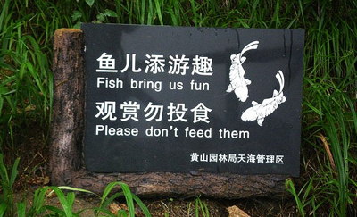 The Chinese Think Fish Are Fun But Don t Want You To Feed Them