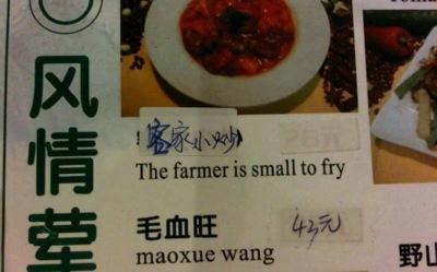 Poor Farmer