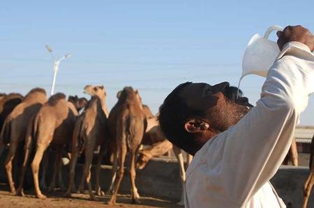 Arab drinking Milk