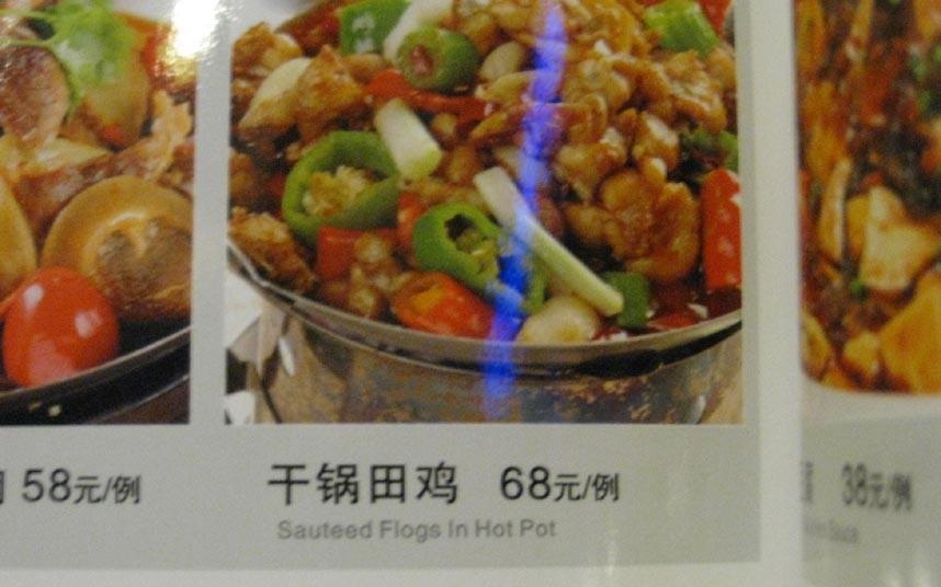 Flogs yummy China