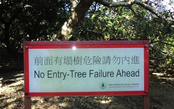 Poor trees in Hong Kong