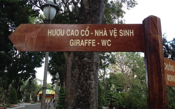 Giraffes are well looked after Ho Chi Minh City