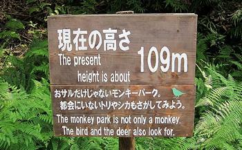When is A Monkey park  not a Monkey Park When it s in Japan