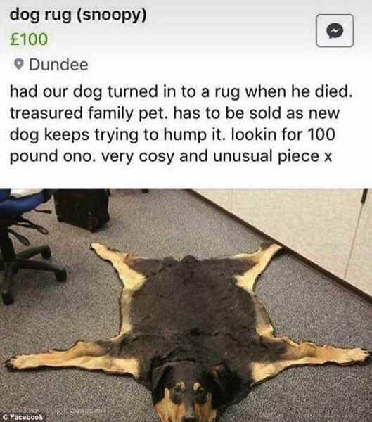 Dearly Departed Dog Rug its keeps looking at me