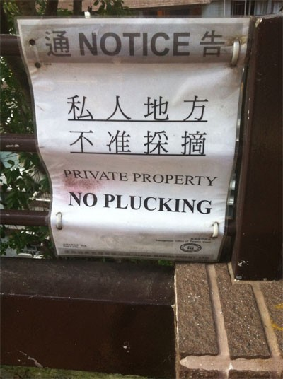 What is their stand on parking