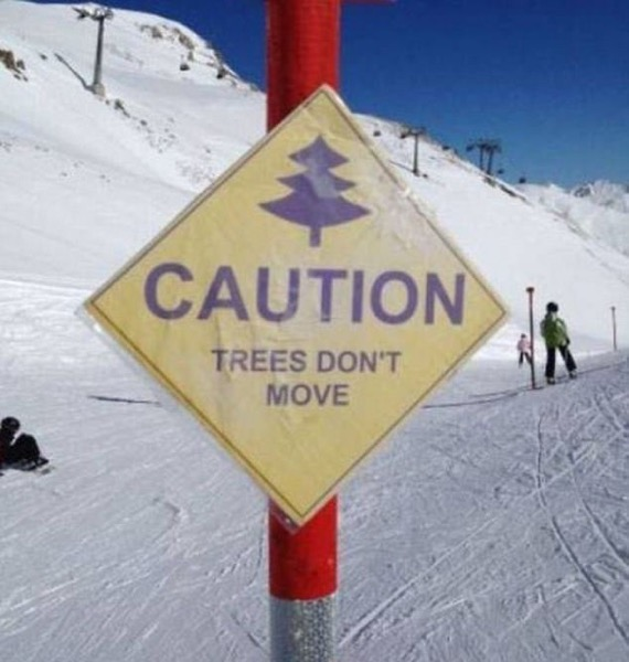 And Skiers are stupid