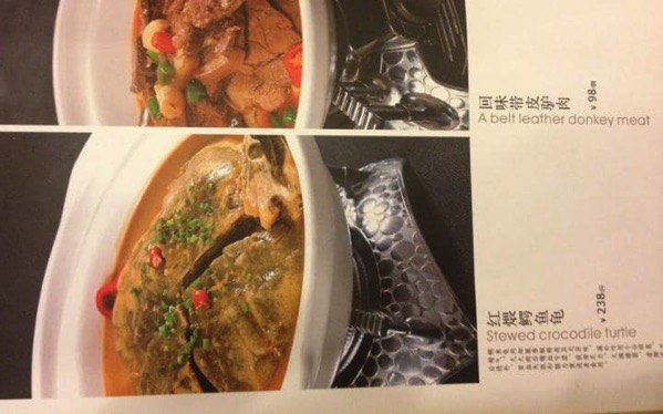 Odd Food