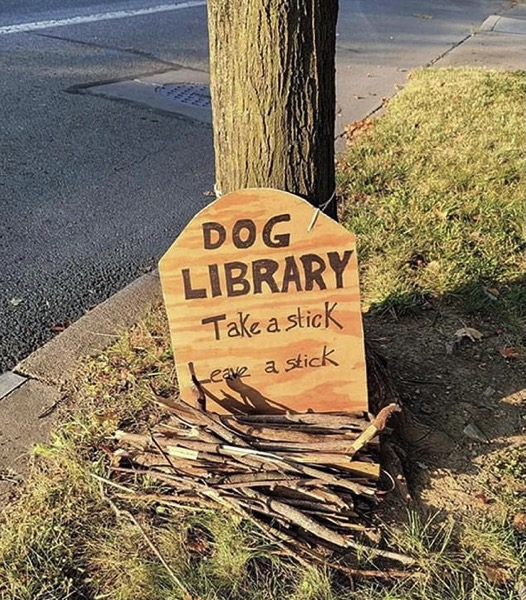 A Branch Library